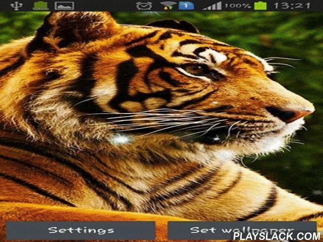 Tigers  Android App - playslack.com , Tigers - examination affluent collections and collections of equatorial vegetations where chaotic tigers live. You can watch the chaotic creatures hiding between bushes and trees, capturing  and just resting under the sun.