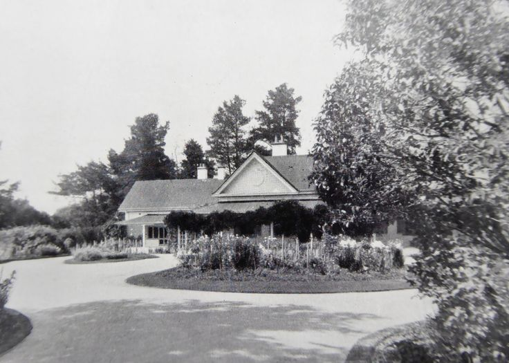 Foxlow, Bungendore, New South Wales. The Property of Franc B. S. Falkiner, Esq. Approximately 15,000 acres. Photo circa 1920. 'Main drive through the garden to the Foxlow Homestead'. Uploaded courtesy of thecollectorsbag.com