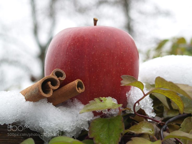 Winter Apple by rumxde