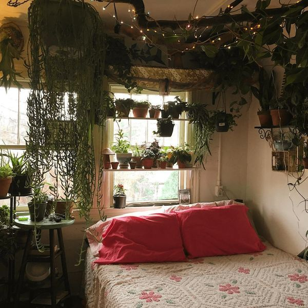Modern Bedroom Colors: These 21 Plant-filled Homes Are Unbe-leaf-able