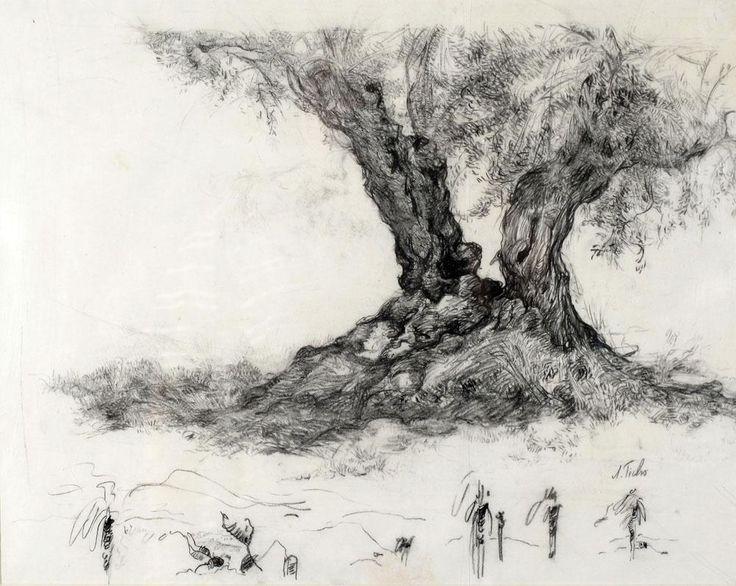 Image result for אנה טיכו