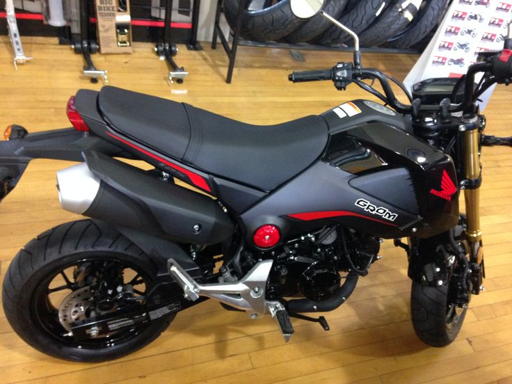 *Honda GROM motorcycle* This slick flat black and red bike is so sick.  Check out it even has flashy gold plated front shocks too.  Come check it out today at Gatto Cycle Shop or call (724) 224-0500