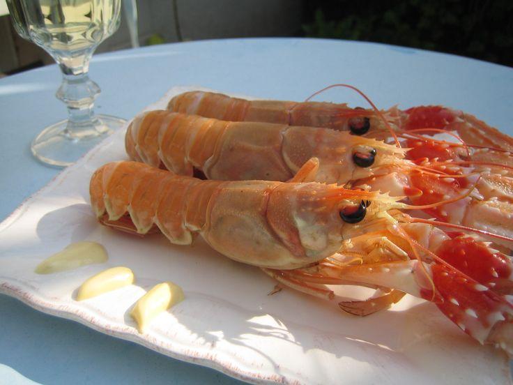 Venez déguster de délicieuses langoustines à Lesconil... #Finistère #Bretagne #Brittany