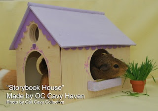 Guinea Pig Houses from OC Cavy Haven - Wendy needs a princess house!