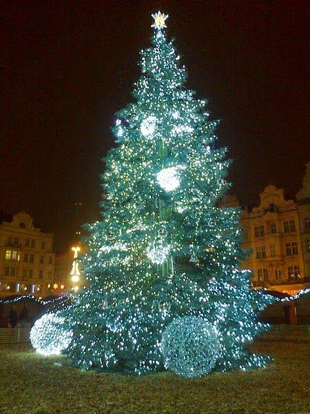 Stromeček v Plzni