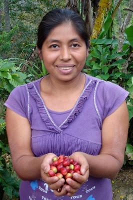 In #Mittelamerika muss mehr für den #Umweltschutz gemacht werden. Dieser #Blog berichtet über eine besondere #Reise