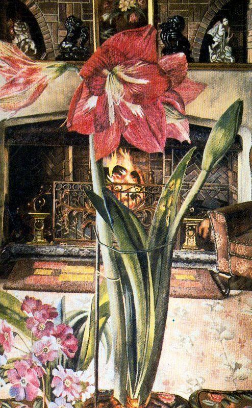 Amaryllis in Chauntry Court - Stanley Spencer