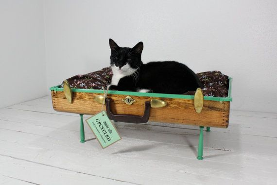 Upcycled Vintage Wooden Suitcase Pet Bed - DOING THIS!!!!Upcycling Vintage, Cat Beds, Pets Beds, Pet Beds, Suitcas Cat, Upcycling Suitcas, Wooden Suitcas, Old Suitcas, Vintage Suitcas