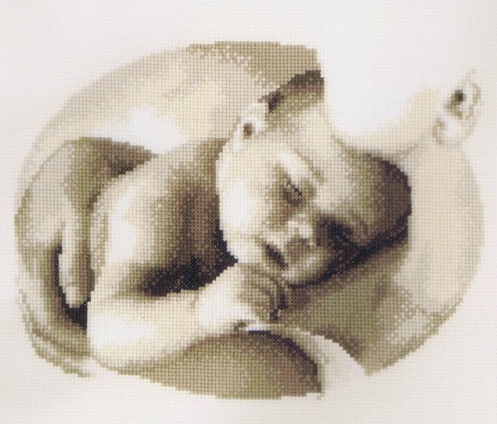 Motherly Love A lovely sepia picture of a baby asleep in his mother's arms. By Vervaco