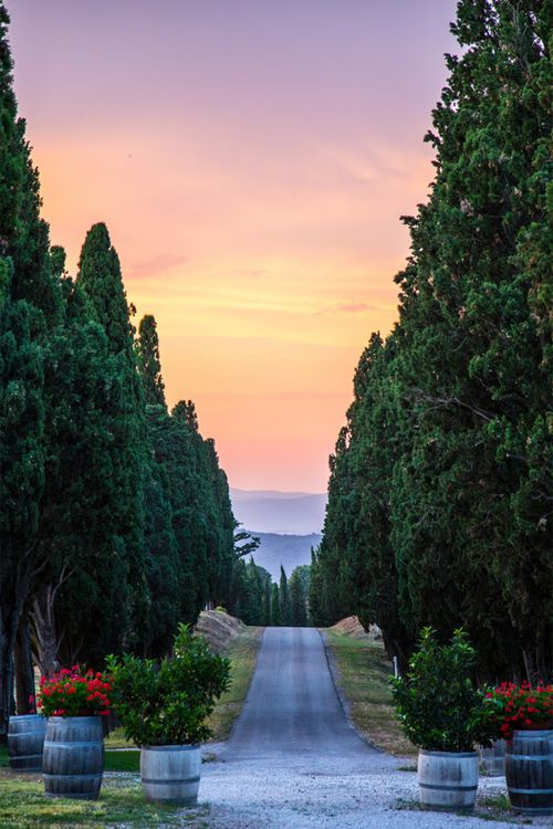#Tuscany is one of the #placestovisitbeforedie, Italy