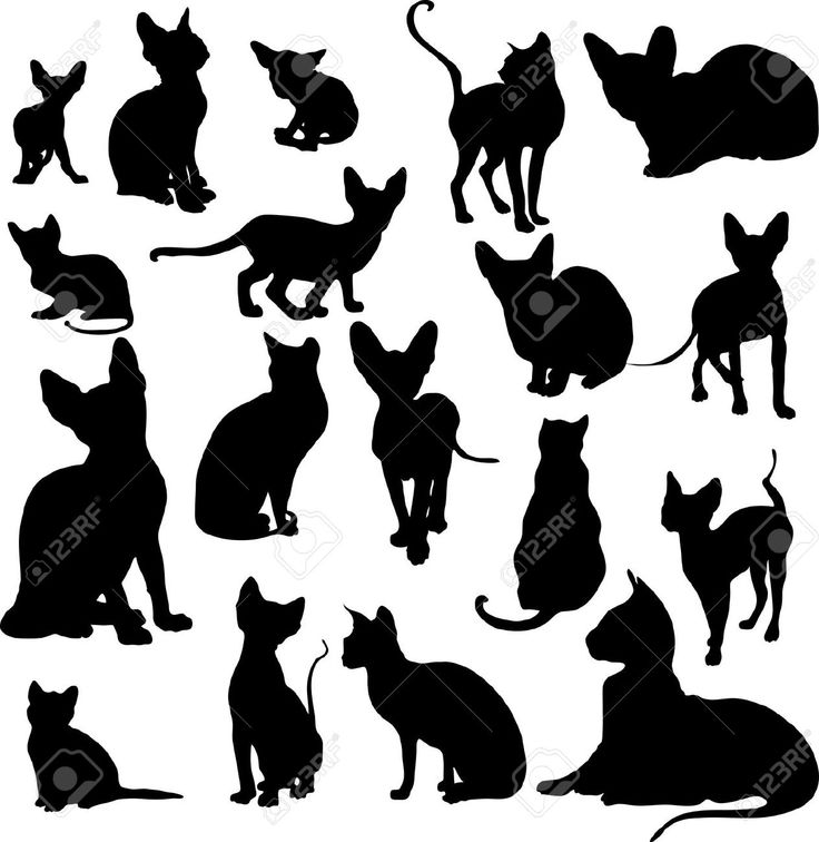 sphynx cat tattoo silhouette - Buscar con Google                                                                                                                                                                                 More