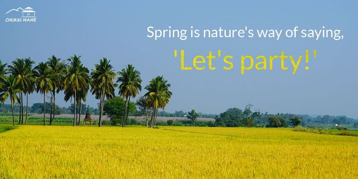 Spring is nature's way of saying, 'Let's party!'   http://www.chukkimane.com