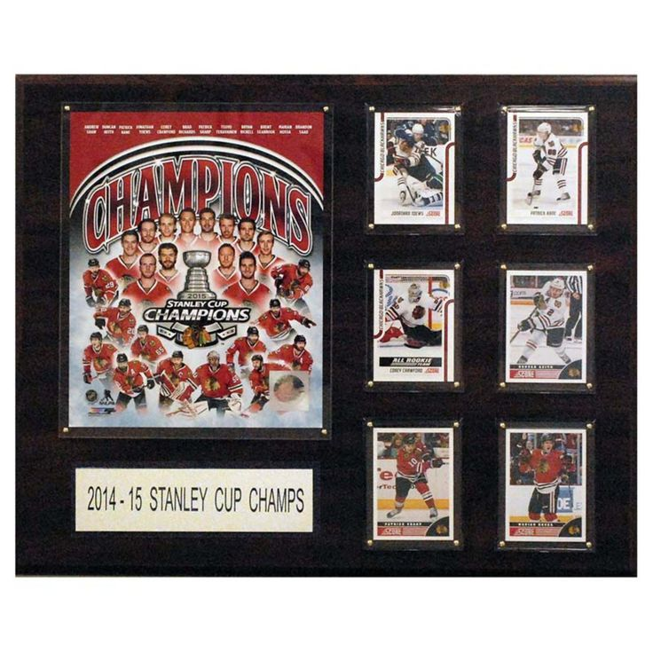 C and I Collectables NHL 15W x 12H in. Chicago Blackhawks 2014-2015 Stanley Cup Champions Plaque - 1215SC15