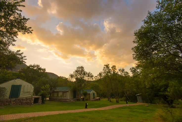 Bush Willow Tented Camp | Muldersdrift | Outdoor | Tented accommodation | Adventure | Camping
