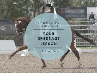 7 Tips for Getting the Most Out of Your Dressage Lesson by Dr Cesar P…