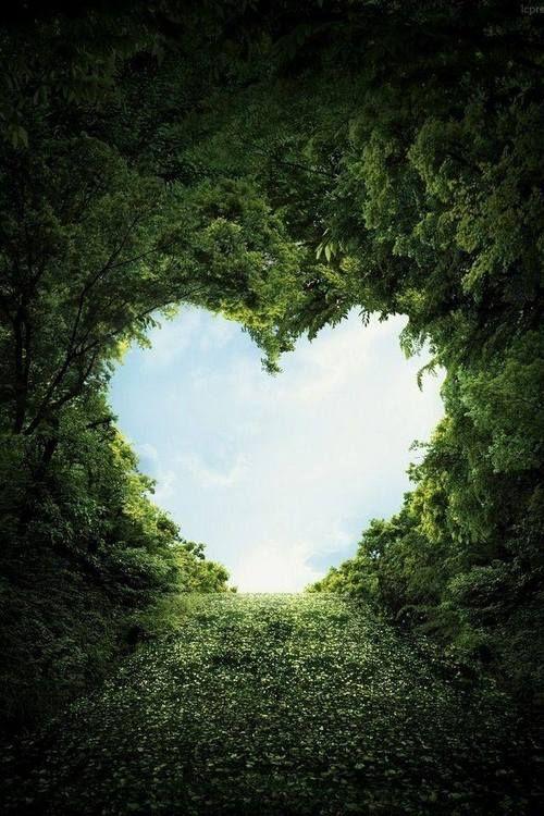 *** je t'ai déjà dit que tu es mon grand amour et que je t'aime de tout mon coeur ?