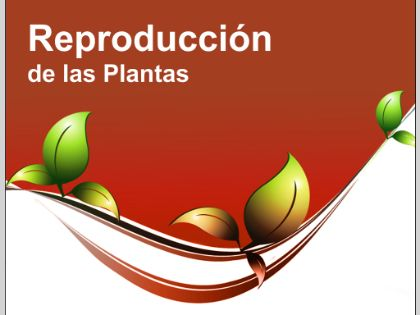 REPRODUCCIÓN La planta se reproducirá mediante esquejes en otoño .