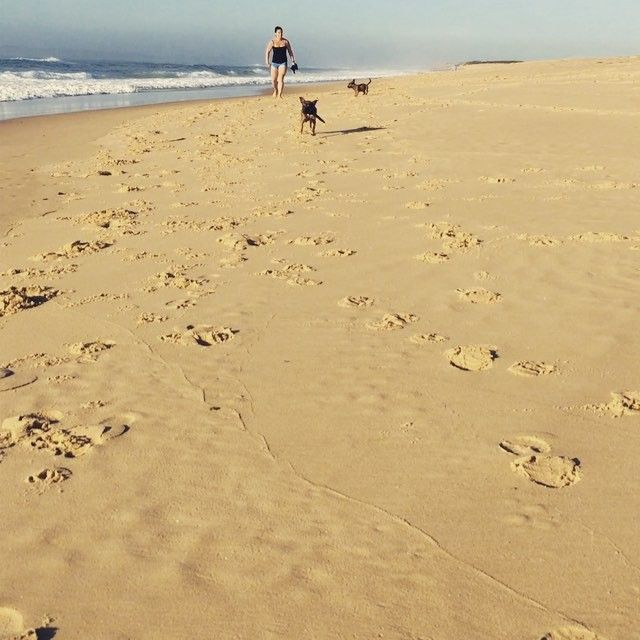 #soda and #pond had their first trip to the #beach today! #love #puppies #puppiesofinstagram @misjess69