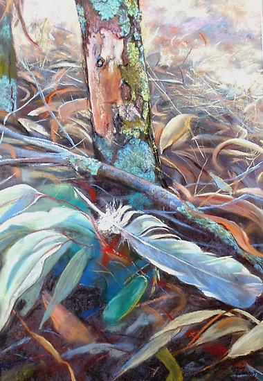 "Lynda Robinson (Pastel Artist) The bush floor"""