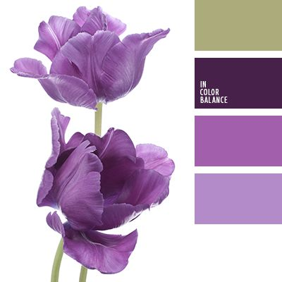 blanco y verde, blanco y violeta, color pantano, color verde pantano, de color púrpura, morado, púrpura oscuro, tonos violetas, verde y blanco, verde y violeta, violeta burdeos, violeta fuerte, violeta y blanco.