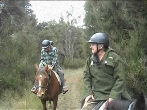 Napier Taupo road, less than hour from Napier, horse trekking at Mountain Valley Adventure Lodge is a true adventure. Our ...