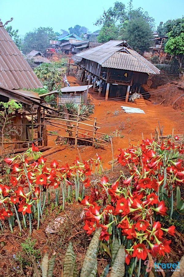 The Akha Hill Tribe Villiage in Chiang Rai, Thailand