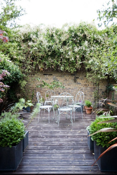 209 best images about petit jardin de ville on pinterest for Petit jardin de ville