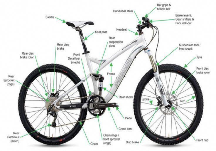 How To Buy Your First Mountain Bike Riding Mountain Mountain