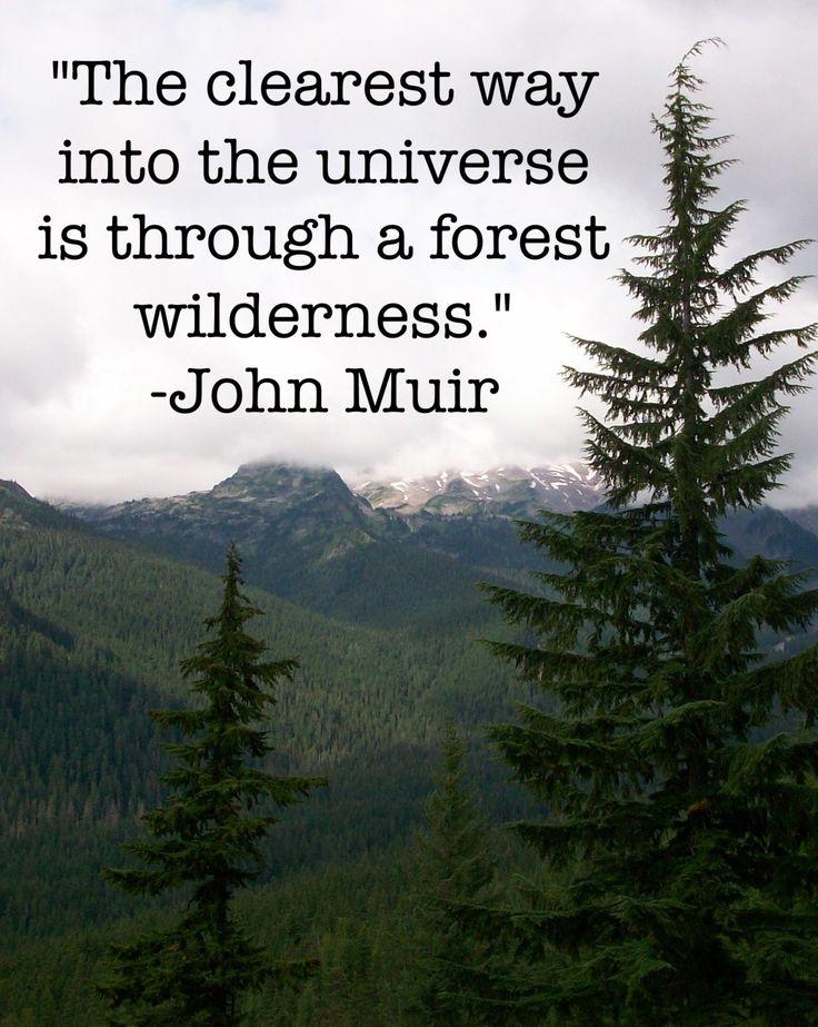 Best John Muir Nature Quotes