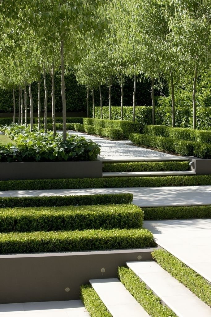 Gorgeous grass steps + tree lined walkway.