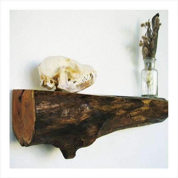 Contemporary Rustic Wooden Log Shelves by TheSaltEmpire on Etsy, $40.00