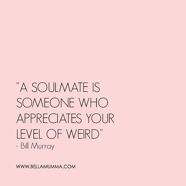 Weekend wisdom #wisewords #billmurray #bellamummaquotes