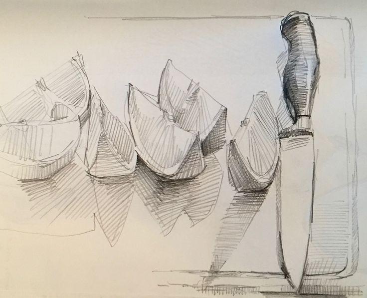 Sliced orange by Sarah Sedwick. #drawing #sketch