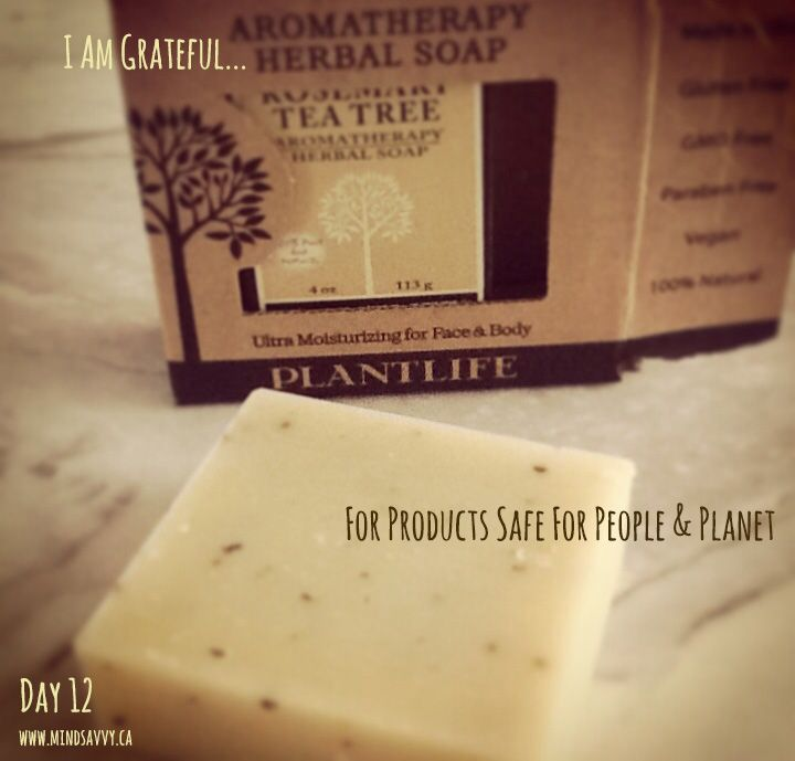 Plant Life soaps!  Hand-crafted, cold processed, 100% natural, nothing synthetic.  Made with organic herbs, coconut oil and olive oil #GMOfree #Vegan #GlutenFree #ParabenFree