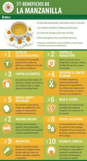 10 Beneficios de la manzanilla.