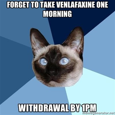 """Forget to take venlafaxine in the morning. Withdrawal by 1pm.""]  Hurray for feeling dizzy, zappy, and vaguely drunk!"