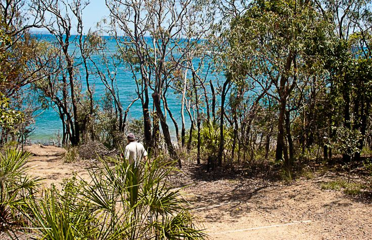 Bush and Beach; rough sand to beach sand. Take almost any walk in the area and you pass by or reach a pristine beach.