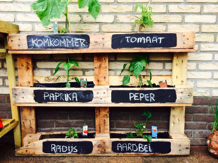 Diy Trend Kruidentuin : Top ideas about kruidentuin gardens pallet herb