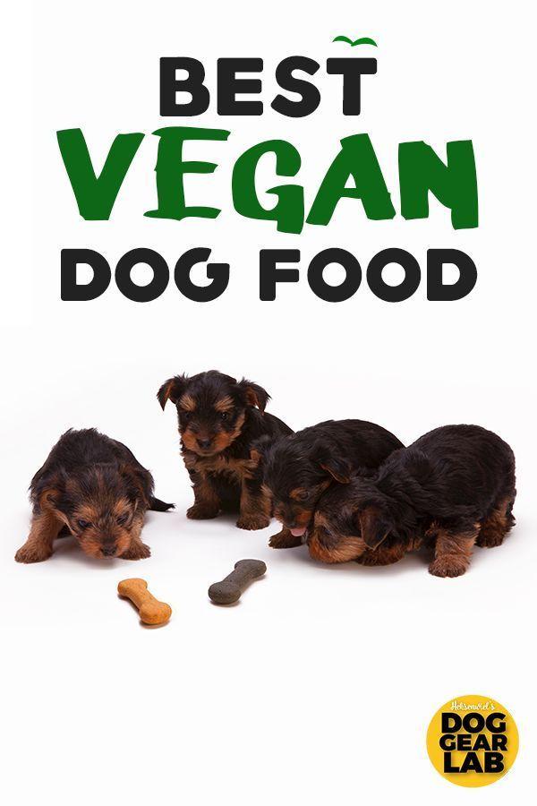 Best Vegan Dog Food Vegan Dog Food Dog Food Recipes Best Dog Food
