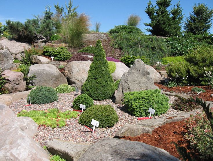 Alpine Garden Design Alluring Design Inspiration