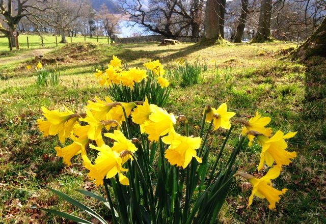 Spring is a wonderful time to visit the Lake District.