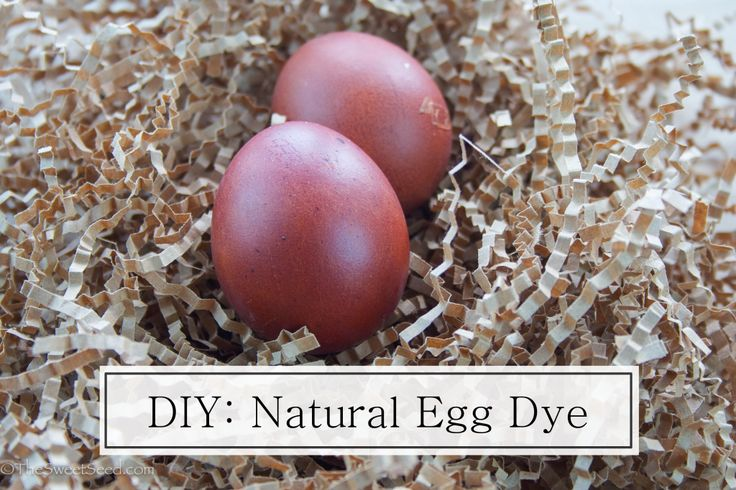 The Sweet Seed shows us a natural way to dye Easter eggs using onions peels.