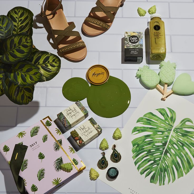 A Green Spread  Colour is Haymes Pond Moss Styling by LENZO + Photography by Fiona Storey