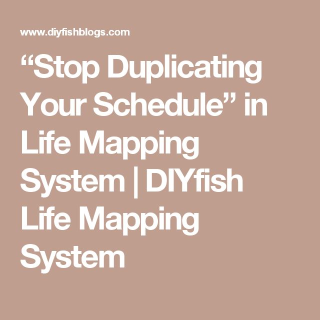 """Stop Duplicating Your Schedule"" in Life Mapping System 