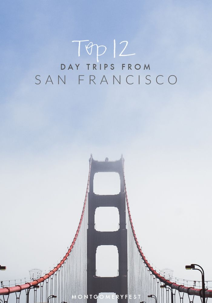 12 of the best day trips from San Francisco to take this year!