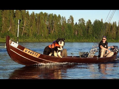Pello in Lapland: the Fishing Capital of Finland: Tornio River Salmon fishing paradise - YouTube