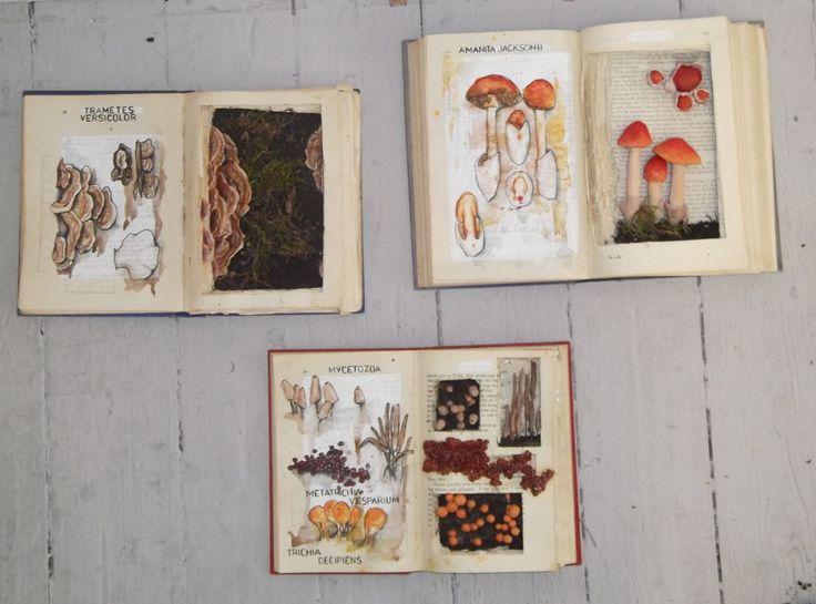 Mushroom book sculpture and studies.