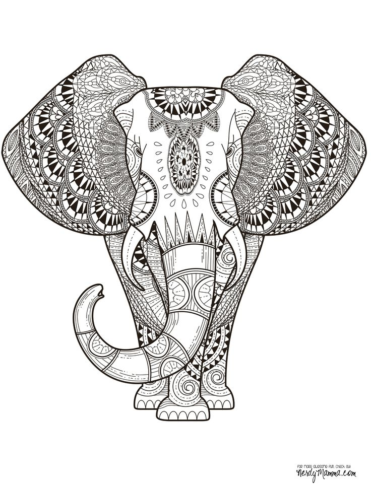 Elephant Zentangle Sketch 11 Free Printable Adult Coloring Pages