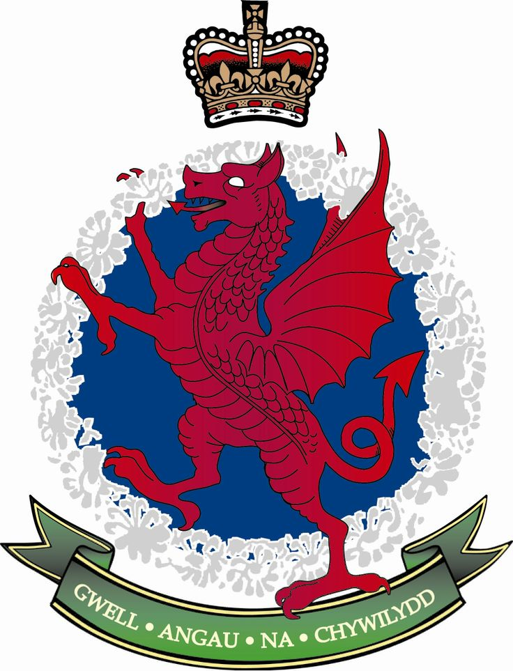 The Regimental Crest if the Royal Welsh, it combines the RWF Red Dragon Rampant and the wreath of daffodils as shown on the SWB Cap Badge.