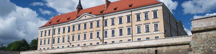 Rzeszów Banner.jpg